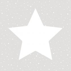 Tapeta Gwiazda 27104